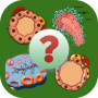 Anatomy Online Quiz: Endocrine System Apk Update Unlocked