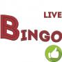 Bingo on money Apk Update Unlocked