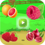 Learning the Names of Fruits – For Kids In English Apk Update Unlocked