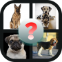 Guess The Dog Breed Game Apk Update Unlocked