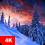 Winter Wallpapers 4K Apk Update Unlocked