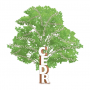 CEDR Apk Update Unlocked